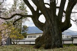 Iida City Museum of Art