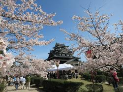 Matsue Jozan Park