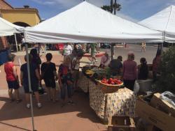 Green Valley Farmer's Market