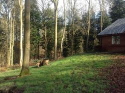 Gorgeous log cabin and hot tub, perfect weekend away with the dogs!