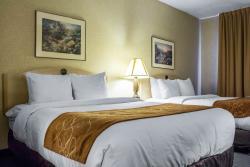 Comfort Suites Old Town