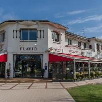 Flavio le Club de la Foret
