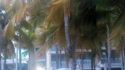 Ponce Hilton stay