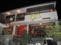 Cats Cafe Bar Restaurante