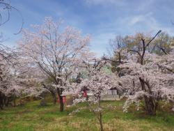 Shonoki Shrine