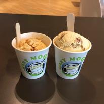 Merry Moo Artisan Ice Cream