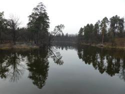 Park Pushcha-Voditsa