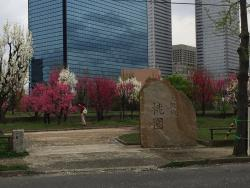 Convenient, easy access and walking distance can reach Osaka Castle to see sakura. Nice and help