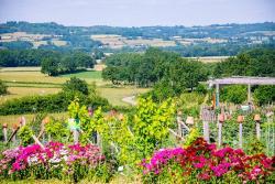Alôsnys, écovillage en permaculture