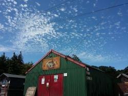 The Original Tin Shed Experience (The History Shed Experience C.I.C.)