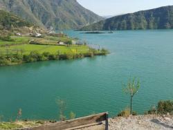 Kayak Tours Berisha