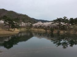 Ono Dam Park