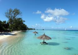 TOPDIVE Tahiti