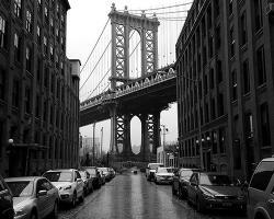 CityRover Walks NY