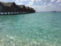 Furaveri Island Resort - April 2016