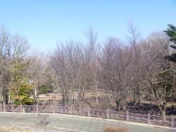 Eniwa Furusato Park