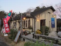 Sakanaya Shokudo Katsuura