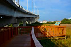 Vilano Beach Nature Boardwalk