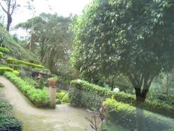 Hotel Overlooking Green Hills