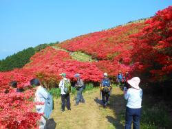 Katsuragi Sanroku Park