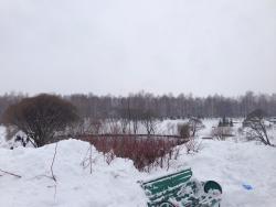 Park of Kirov