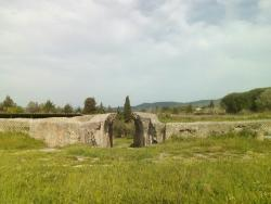 Area Archeologica di Poggio Moscini