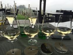 Weingut Tschermonegg