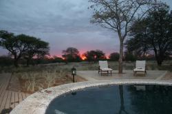Buffalo Thorn Safari Lodge