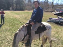Rocke N Horse Farm