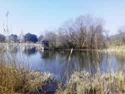 新旭町水鳥観察センター