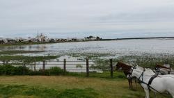imagen Aires de Donana en Huelva