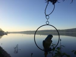 Sapanca gölü kıyısında mükemmel manzara
