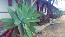 A Coutada Hotel Rural