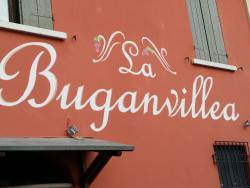 La Buganvillea