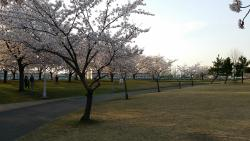 Niida Park