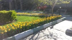 Khaqani Park