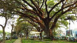 Taman Trunojoyo