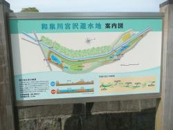 和泉川宮沢遊水地