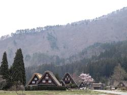 Hitonomori