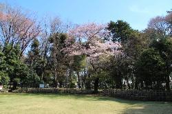 Former Shibusawa Garden