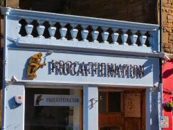 Procaffeination
