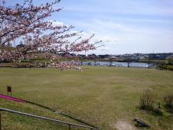 Harima Chuo Park