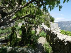 Le jardin medieval de Sainte-Agnes