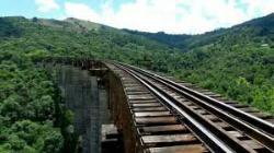 Mula Preta Viaduct