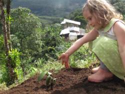 Finca Don Eduardo Coffee Farm