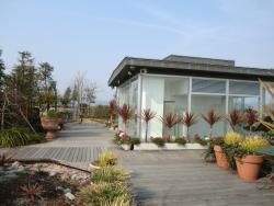 Flower Park Konan (Konan Kaki Engei Park)