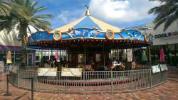 The Downtown Carousel