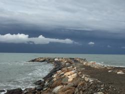 Marina di Bibbona - Marina di Cecina Trail