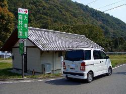 Otaki River Forest  Park