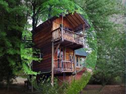 Sycamore Avenue Treehouse Lodge